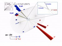 Newswise: LHC scientists detect most favored Higgs decay