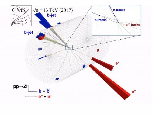 LHC scientists