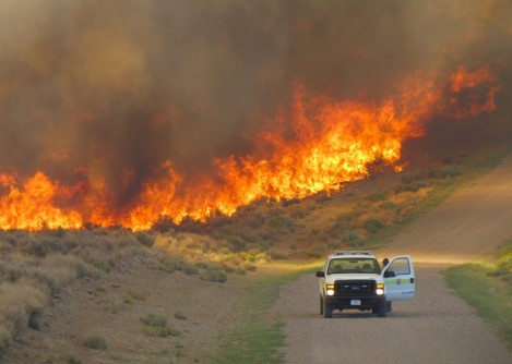 Newswise: When to Evacuate Residents During a Wildfire