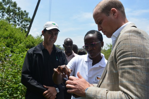 Newswise: Prince William Visits United for Wildlife Project 