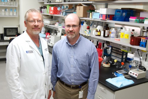Newswise: Brain Cancer Immunotherapy SurVaxM Extends Survival, Even in Hard-to-Treat Patients