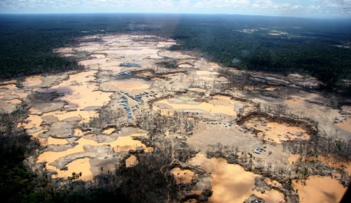 Newswise: Rainforest destruction from gold mining hits all-time high in Peru