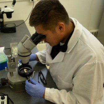Newswise: Summer undergraduate researcher increases knowledge, confidence