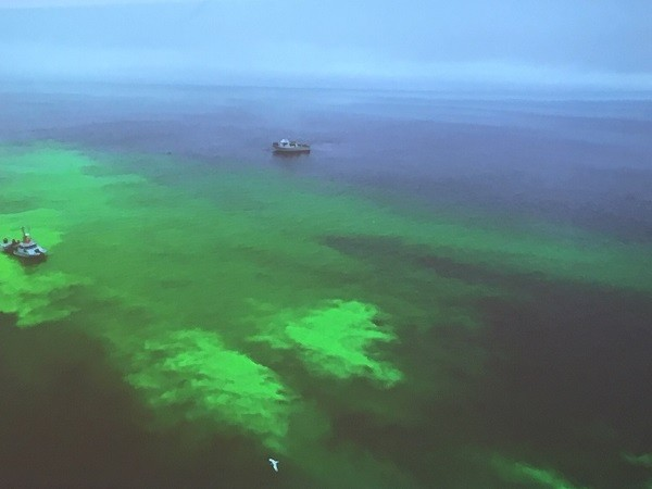 Researchers simulated an oil spill by releasing a neon green biodegradable dye from a vessel of the Monterey Bay Aquarium Research Institute (left), while representatives from the Coast Guard, ADAC, WHOI, S&T and other organizations watched from another boat on the right.